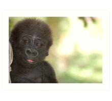 Baby Gorilla 1 Art Print