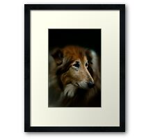 The Lady's Portrait Framed Print