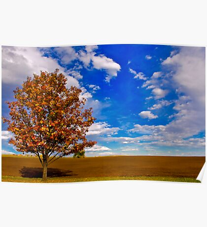 An Autumn Tree Poster