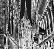St. Patricks Cathedral by Kat Miller