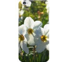 Poet Daffodils Dreams - Impressions Of Spring iPhone Case/Skin
