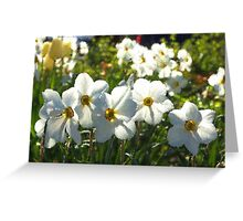 Poet Daffodils Dreams - Impressions Of Spring Greeting Card