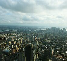 View From Empire State Building by eelsblueEllen