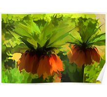 Showy Orange Crown Imperial Flowers - Impressions Of Spring Poster