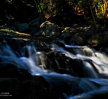 Autumn Stream, White Mountains National Forest, NH by Richard VanWart