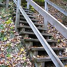 Steep Stairs by Tammy F