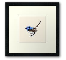 Little Wren in Natural Framed Print