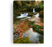 Mystic Pools: South Wales Canvas Print