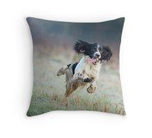 English Springer Spaniel 4 Throw Pillow