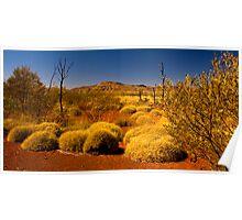 Outback Vista. Poster
