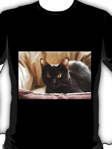 Black cat cosy in bed T-Shirt