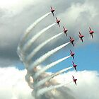 Arrows Swan Formation by Colin J Williams Photography