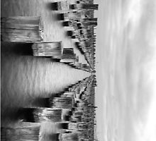 Stilts and princes pier by joshsilver95
