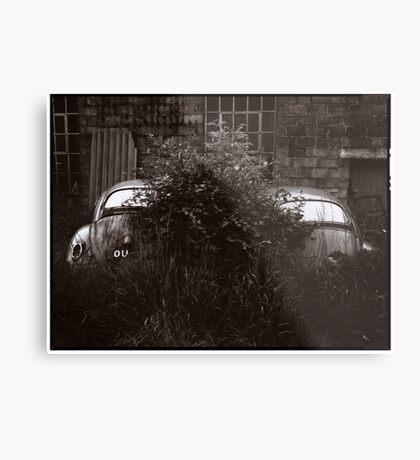 Where Old VW Beetles Go To Die Metal Print