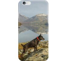 The Poise Of The Posing Patterdale iPhone Case/Skin