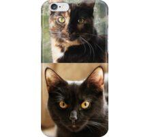 Black cat and Tortoiseshell cat  iPhone Case/Skin