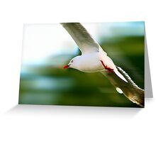 Flying Speed Greeting Card