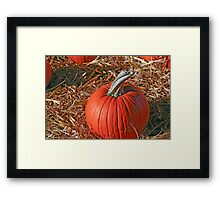 Pumpkin Patch II Framed Print