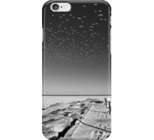 Bird Tornado iPhone Case/Skin