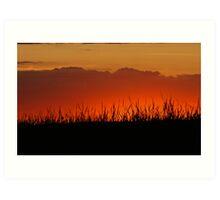 sunset and tall grass Art Print