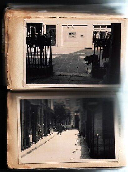 paris journals 2 by evilpigeon