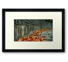 Fallen leaves (Nantong, China) Framed Print