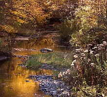 River of Gold by cherylc1