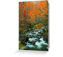 MIDDLE PRONG LITTLE RIVER,AUTUMN Greeting Card