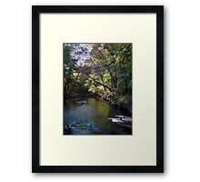In my BackYard its a River Framed Print