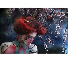 LadySpring&Silence Photographic Print