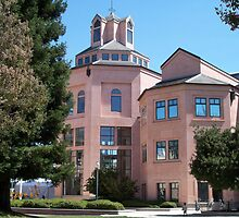 City Hall in Mountain View by daffodil