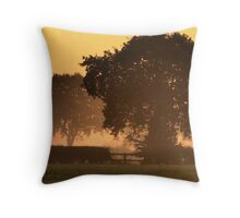 Sunrise Trees Throw Pillow