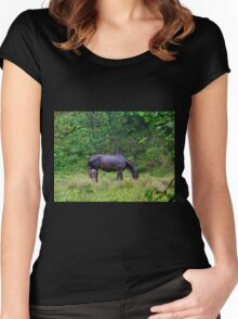 Soggy Equine Beauty in Bocas Del Toro Women's Fitted Scoop T-Shirt