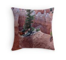 Rooted in Sandstone Throw Pillow