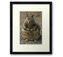 Big Fat Mama Framed Print