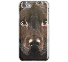 Abstract Chocolate Labrador iPhone Case/Skin