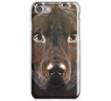 Abstract Chocolate Labrador iPhone Case/Skin