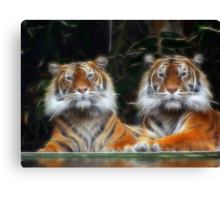 Just The Two Of Us Canvas Print