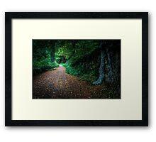 Golden Autumn lane  Framed Print
