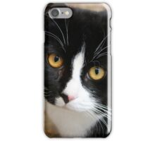 Black & White Cat V iPhone Case/Skin
