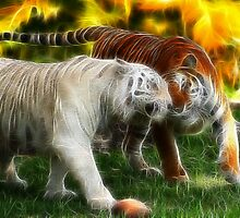Play Time by Angi Baker