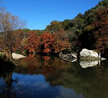 Guadalupe River State Park 2 by Judy Vincent