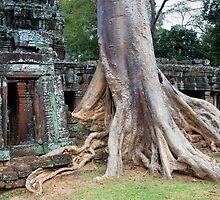 Ta Prohm Temple Ruins in Cambodia by Artur Bogacki
