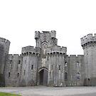 Penrhyn castle by ccrcats