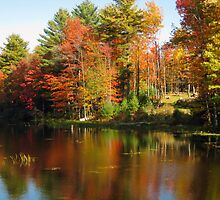 autumn's palette by marianne troia