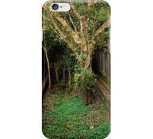 Jungle Temple Ruins in Cambodia iPhone Case/Skin