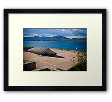 The little girl who saved the whale Framed Print