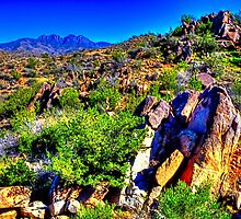 Four Peaks from Across the Sonoran Desert by Roger Passman