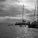 Redsail in Black & White by caymanlogic