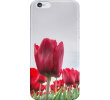 Red tulips 4 iPhone Case/Skin
